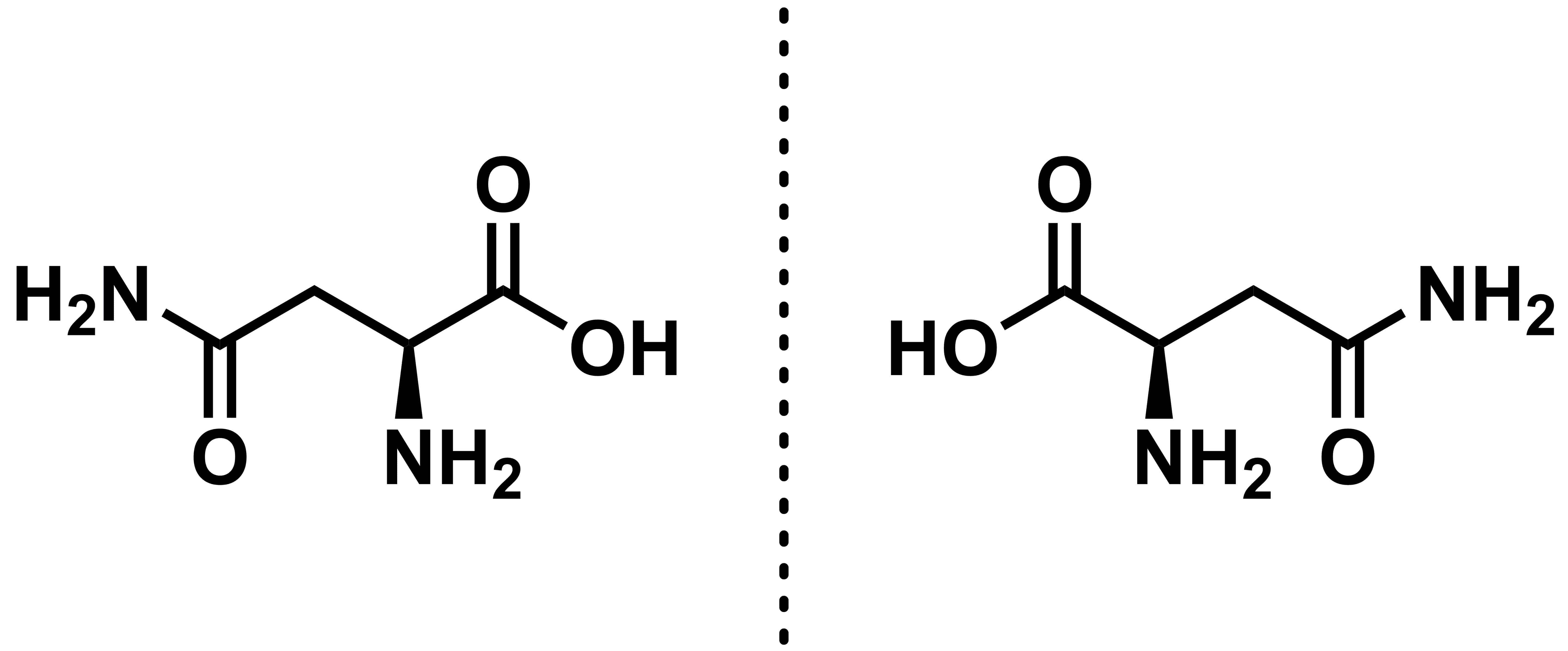 L- and D-asparagine