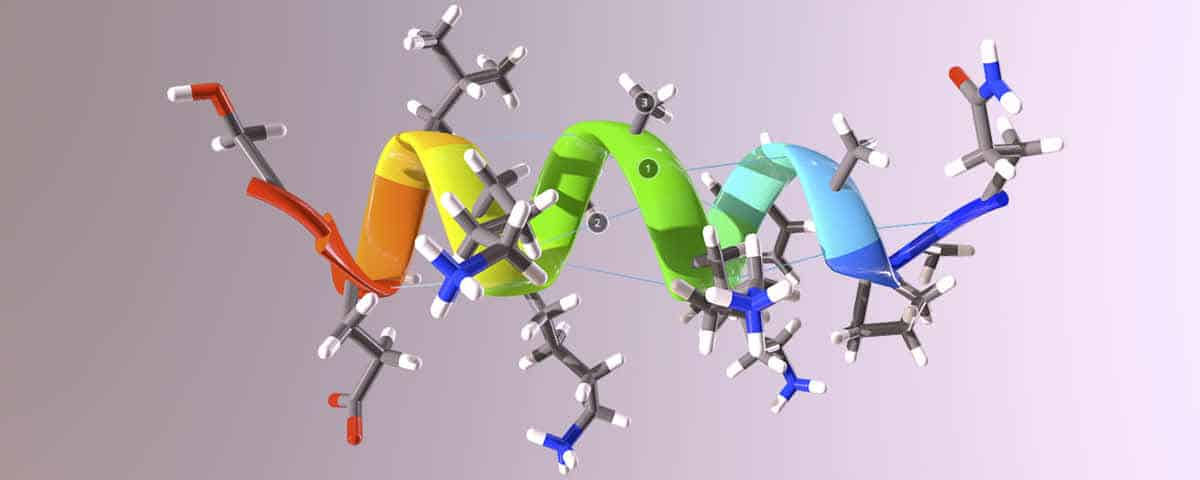 Amides – Functional Group Spotlight
