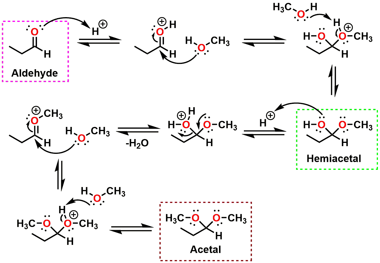 Figure 2 - Mechanism of acetal formation