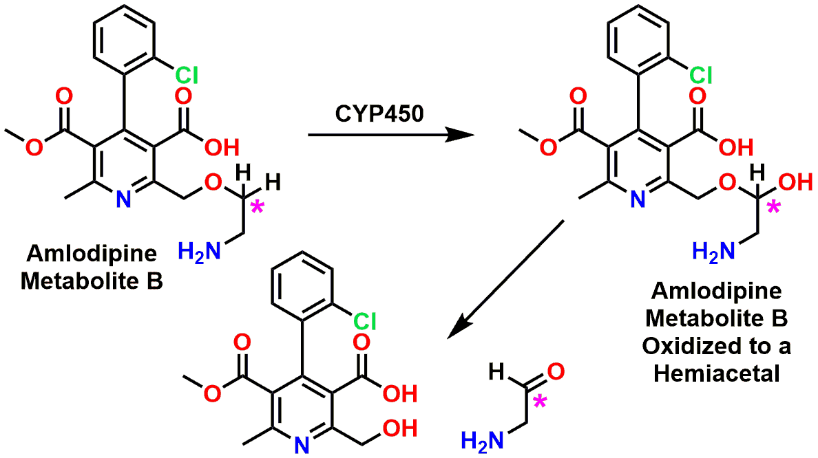 Figure 9: Overview of the Cytochrome P450 oxidation of the side chain of Amlodipine