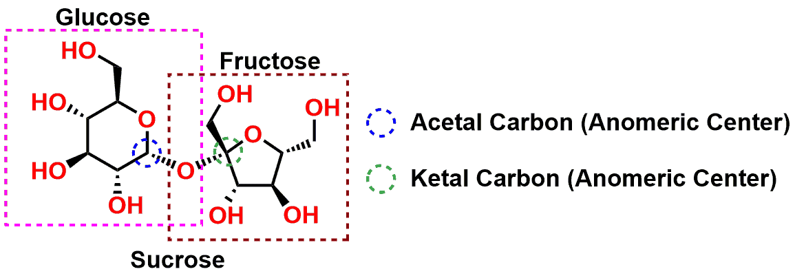 Structure of sucrose